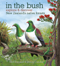 In the Bush Book