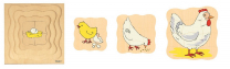 Growth Puzzles - Chicken