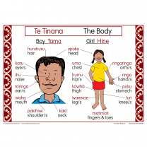 The Body Bilingual Chart