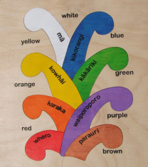 Coloured Koru Wooden Puzzle
