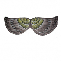 Kakapo Bird Wings