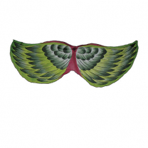 Kakariki Bird Wings