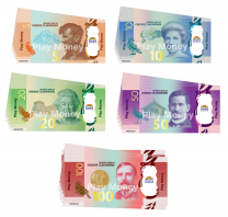Small NZ Money Pack - Tear Resistant