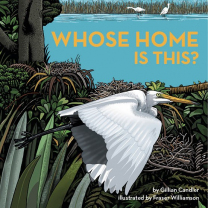 Whose Home is This? Book