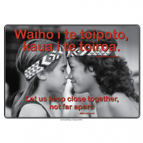 Bilingual Poster Set 2