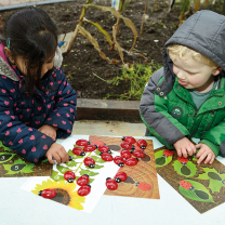 Ladybugs Counting Kit