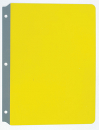 Full Page Reading Guides - Yellow