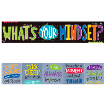 What's Your Mindset Banner (2-sided)