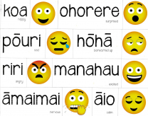 Magnetic Maori Feelings - Emojis