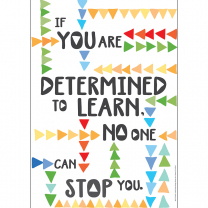 Determined to Learn Poster