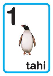 Te Reo Maori Number Frieze