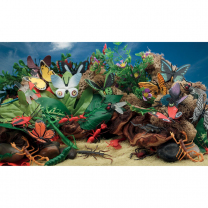 Marvellous Minibeasts Scene Kit