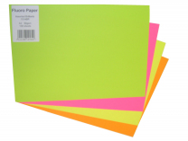Paper A3 Assorted Fluoro