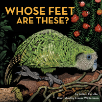 Whose Feet Are These? Book