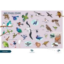 Ngā Manu Māori (Native Birds) Chart