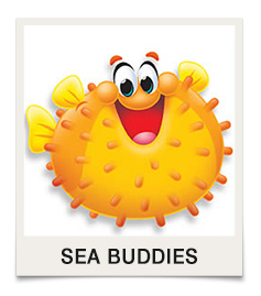 Sea Buddies
